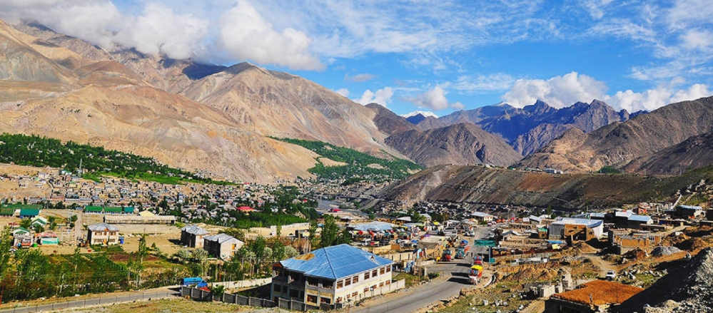Kargil - Dogether